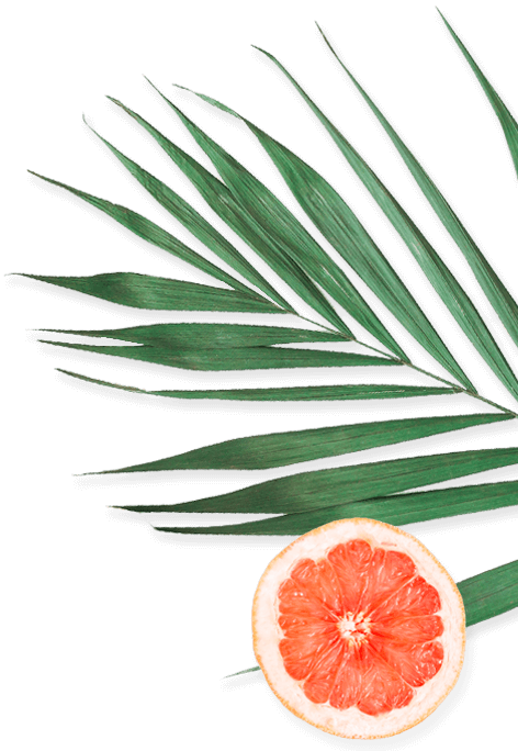 Banner-3-Leaf