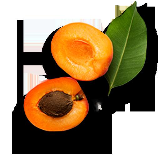 Left-Apricots