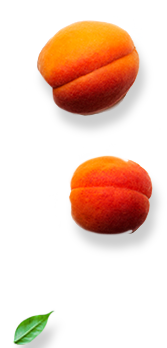 Right-Apricots
