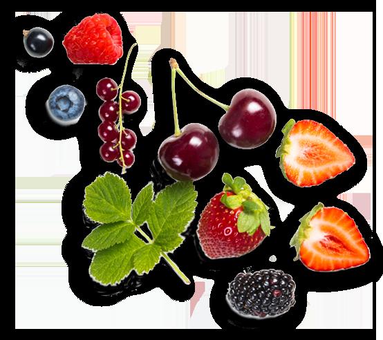 Fruit-Juice-Concentrates-1