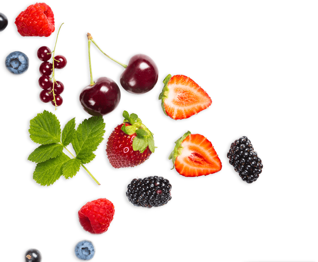 Fruit Juice Concentrates_Banner