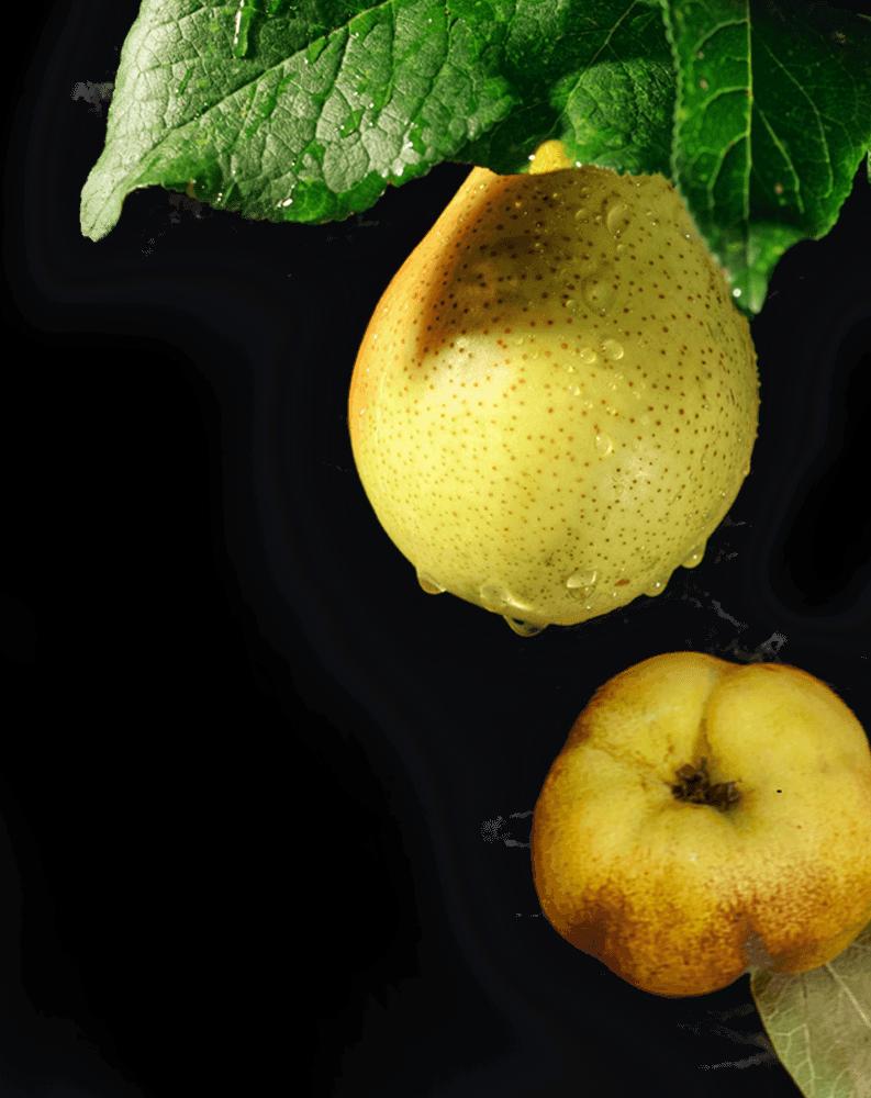 Fruit Sweeteners