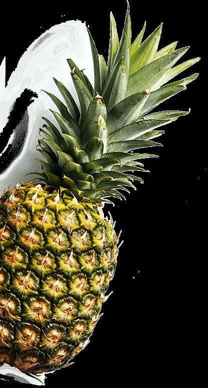 pinepleImage